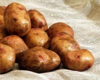 Картофель семенной клубнями